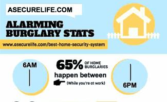 ASecureLife.com Burglary Statistics Infographic Icon